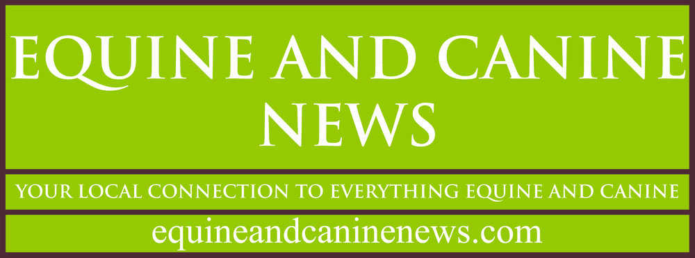 Equine and Canine News Logo June 2012  jpg file.jpg