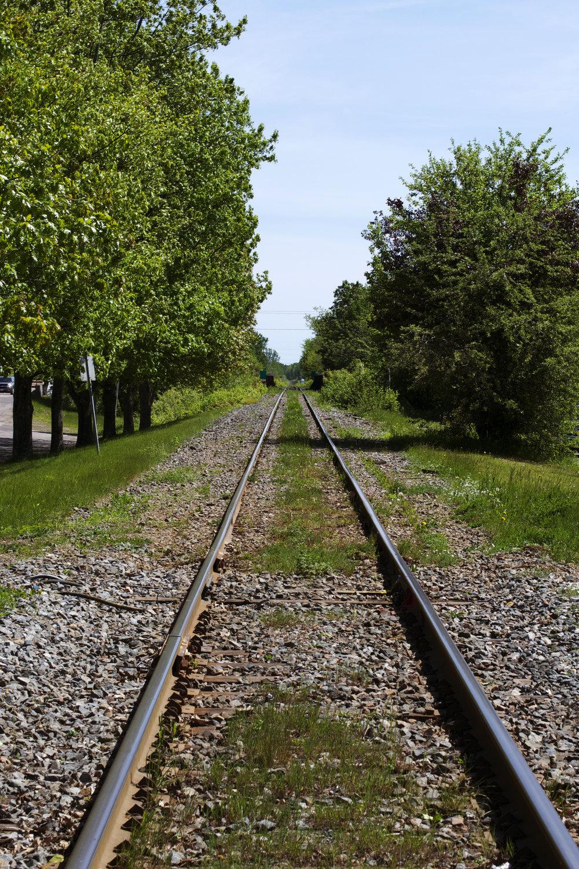 down the tracks photo.jpg