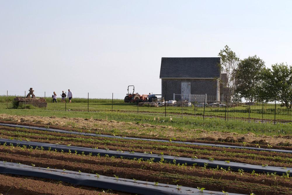 field-tractor-inukshuk.jpg