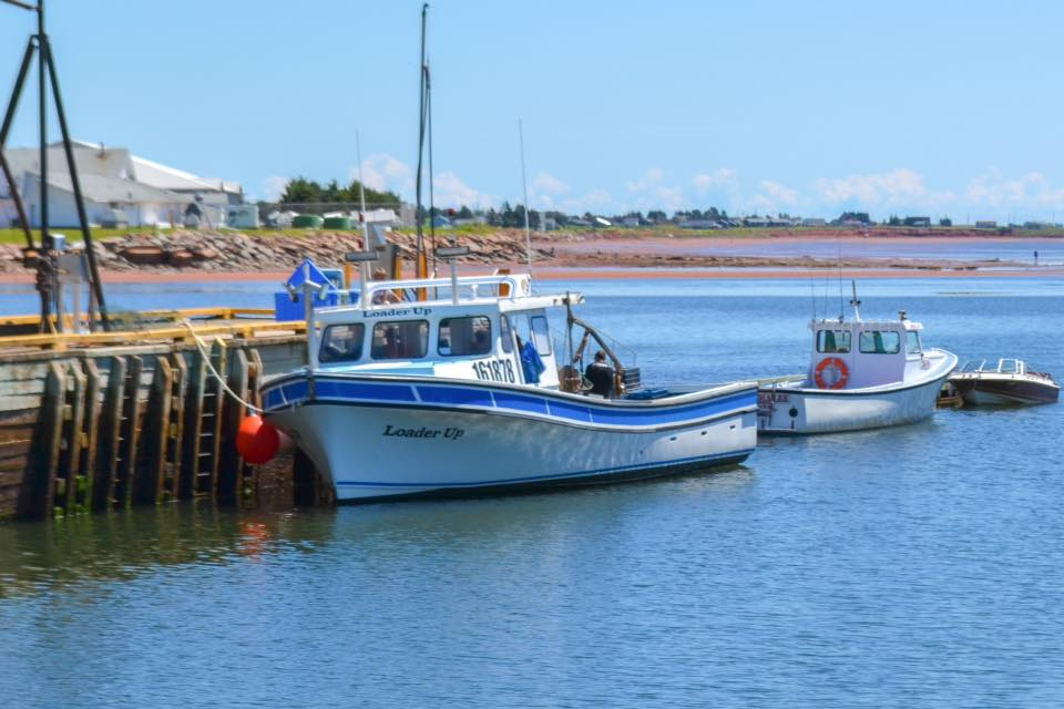 fishing-boats.jpg