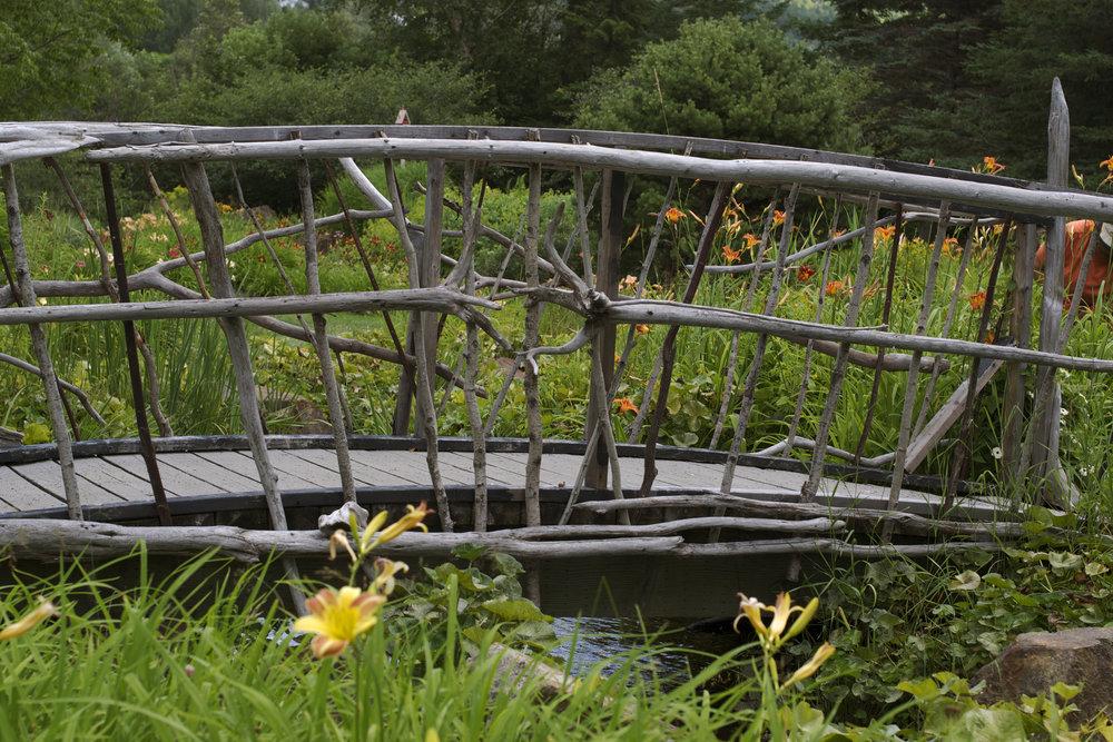driftwood-bridge.jpg