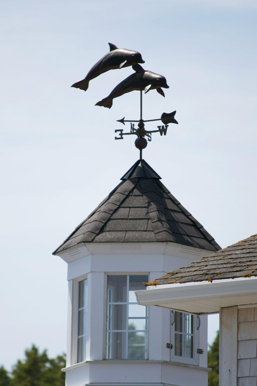 cupola-dolphins.jpg