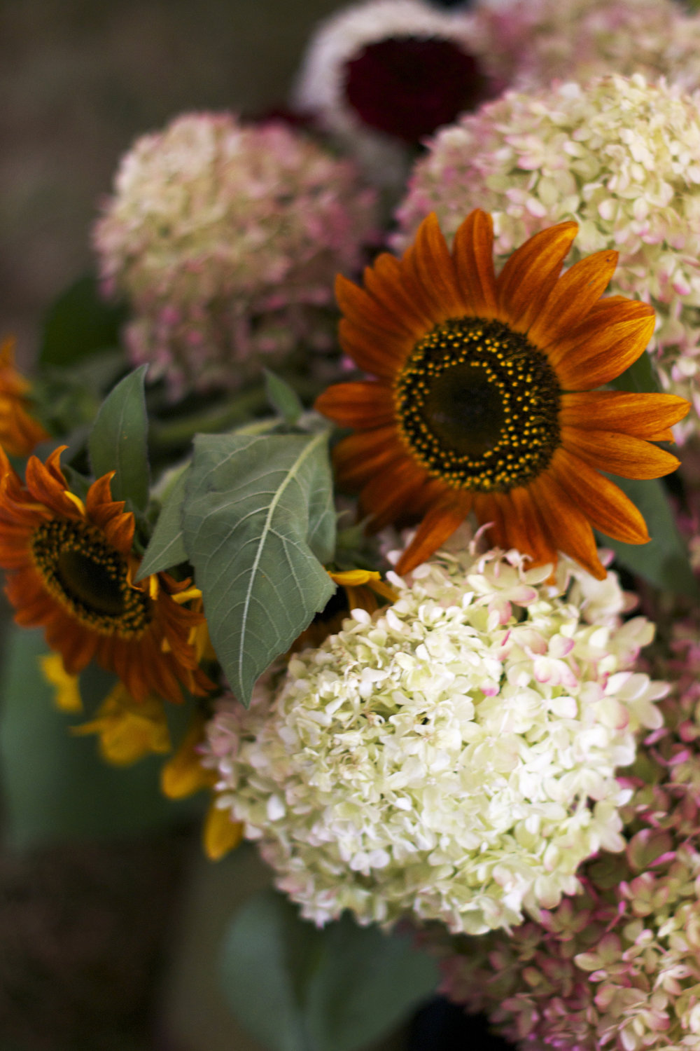 floral-autumn-bouquet.jpg