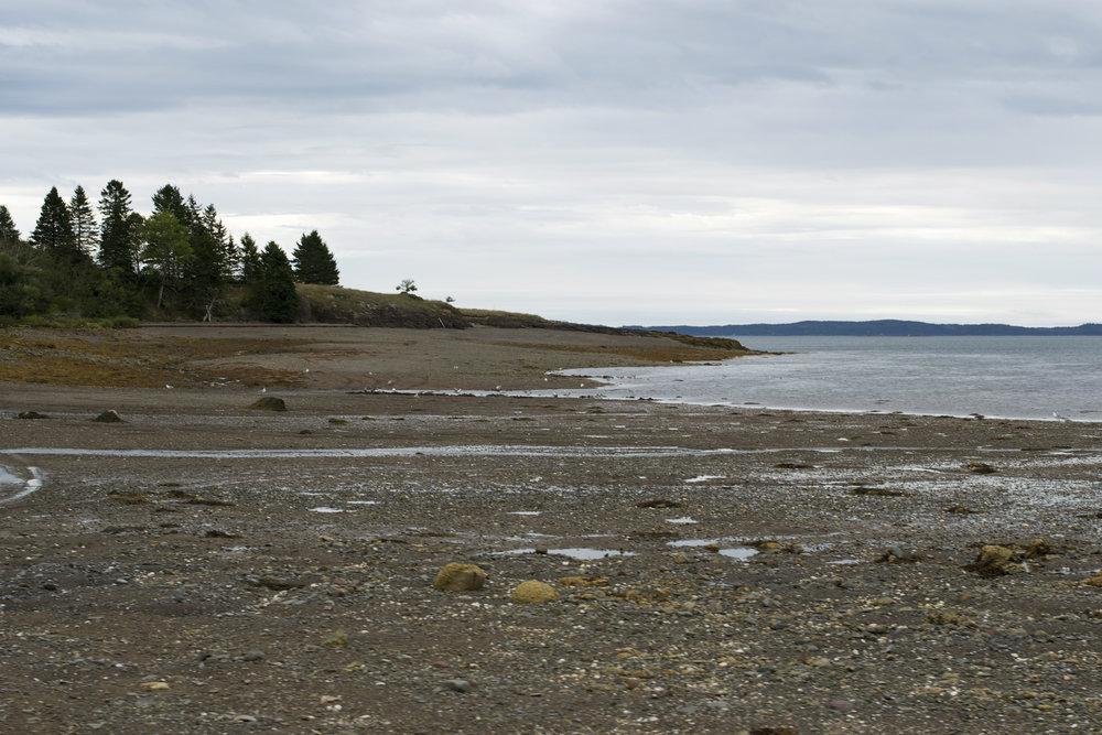shoreline2.jpg