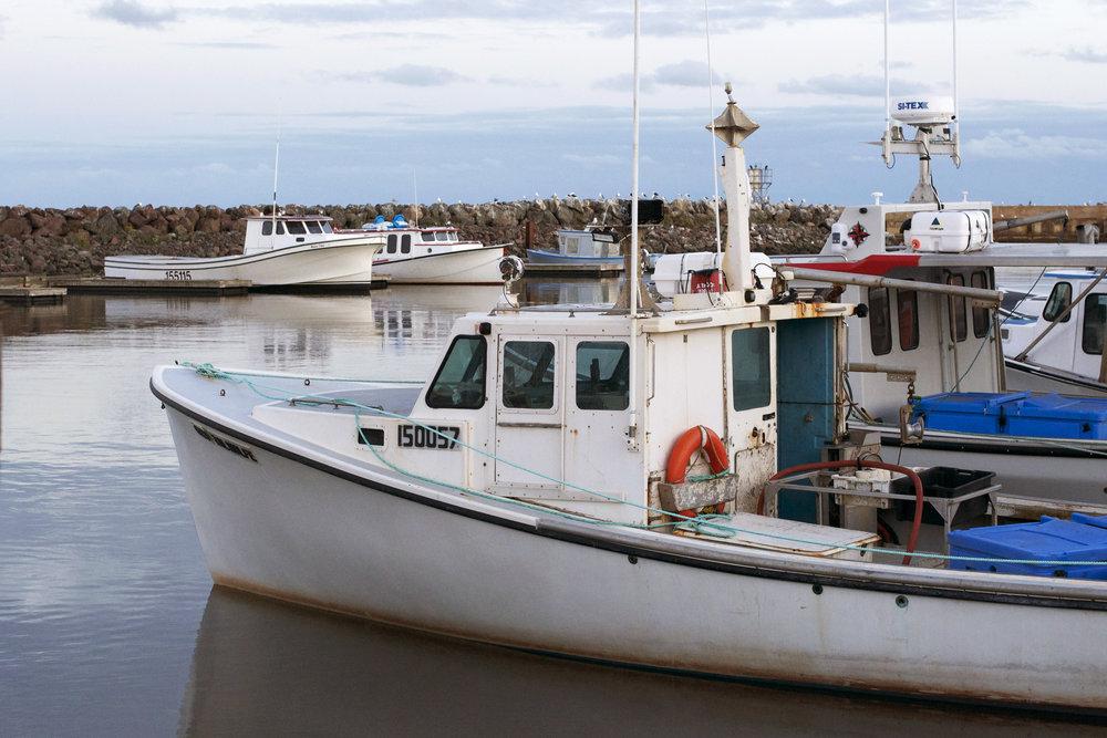 boats-at-wharf.jpg