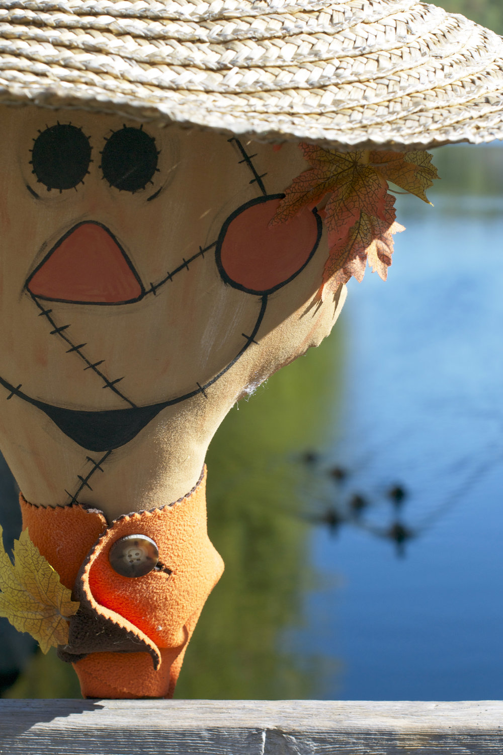 scarecrow-with-ducks.jpg
