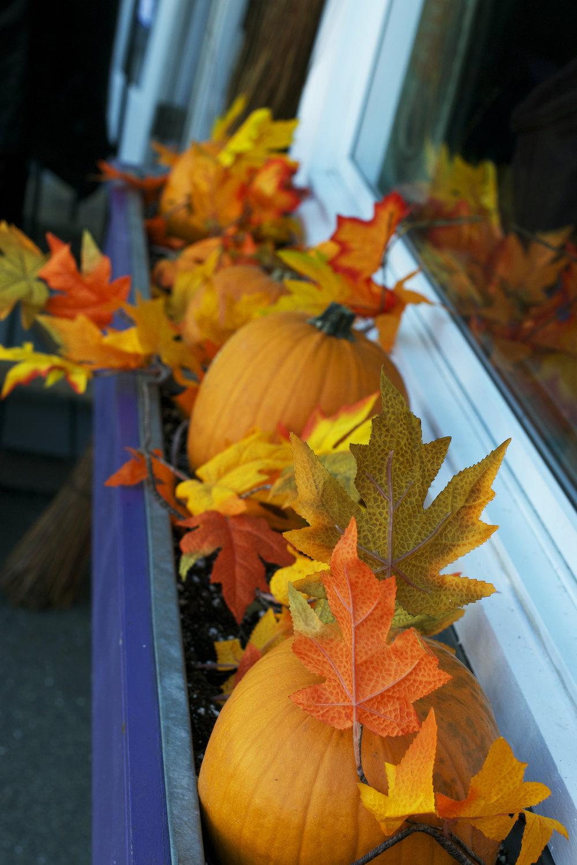 pumpkins-and-fake-leaves.jpg