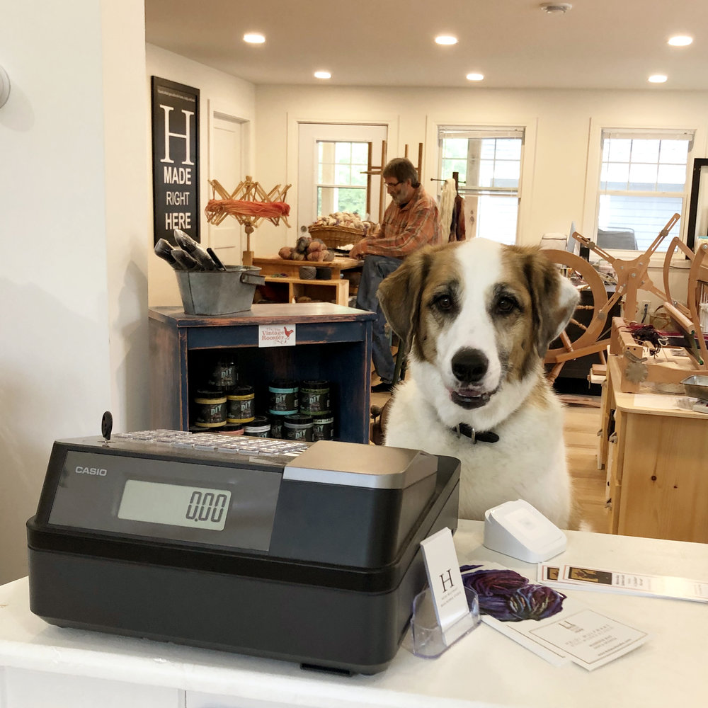 dog-at-cash.jpg