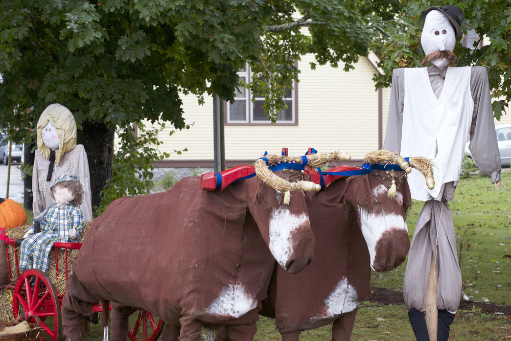oxen-with-farmer.jpg