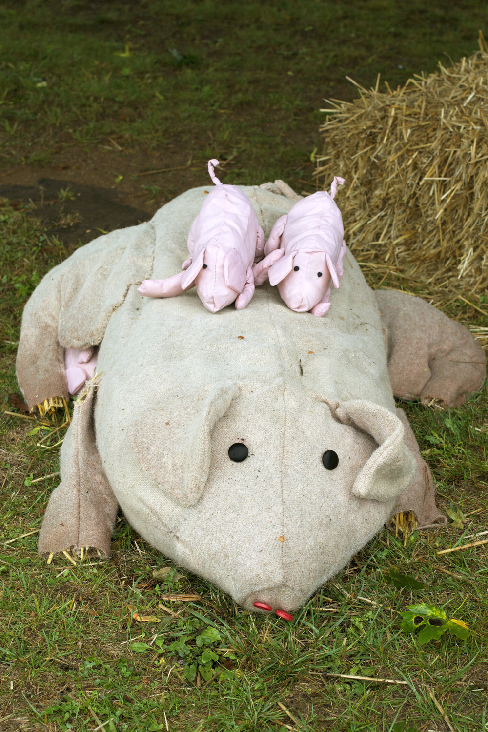 Mama-Pig-and-piglets.jpg