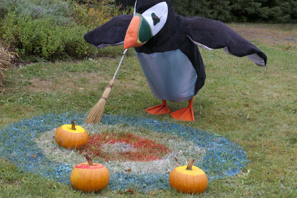 curling-penguin.jpg