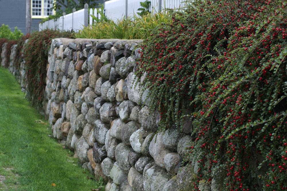 berry-wall-long-view.jpg