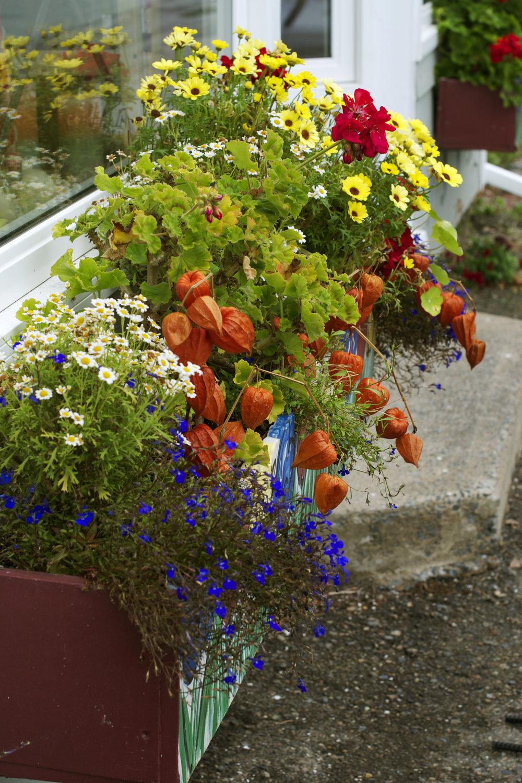 flower-box.jpg