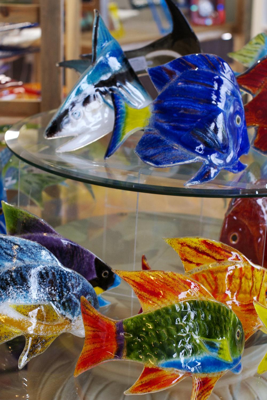 glass-fish.jpg