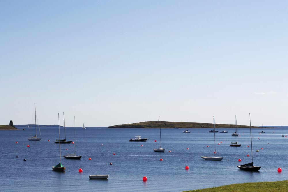 so-many-sailboats.jpg