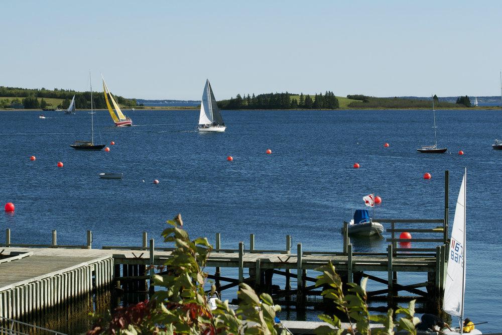 several-sailboats.jpg