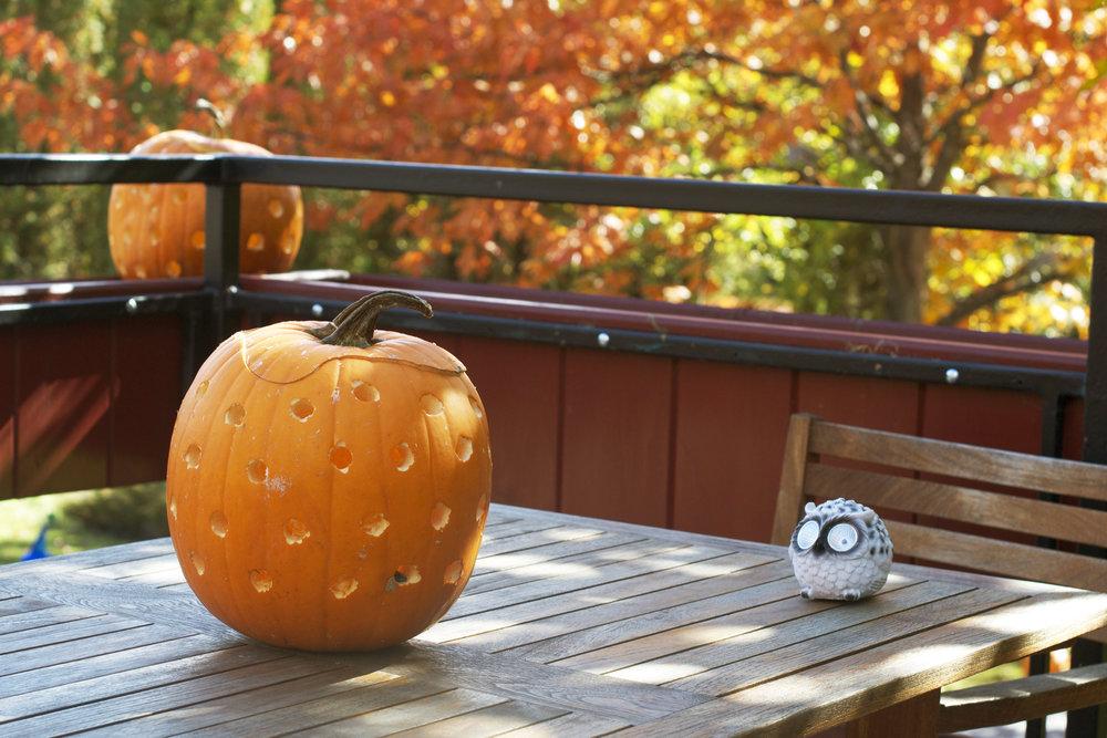 patio-pumpkins-on-tables.jpg