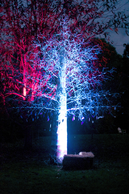 wire-tree-lit-up.jpg