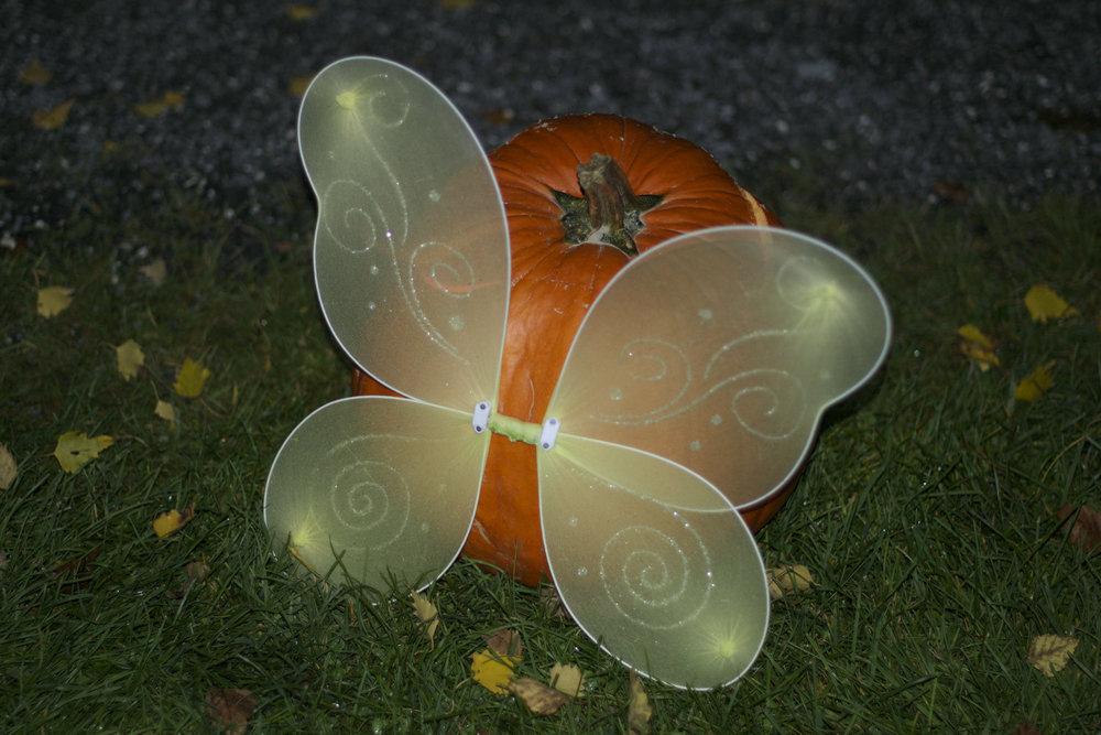 fairy-wings-pumpkin-close-up.jpg