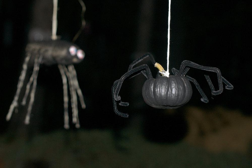 hanging-spiders.jpg