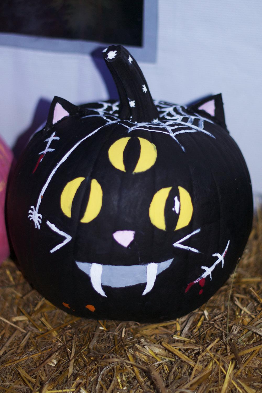 3-eyed-cat.jpg