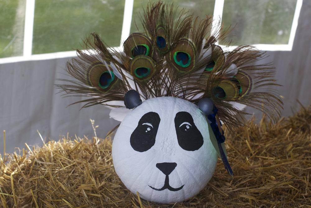 panda-peacock-hair.jpg