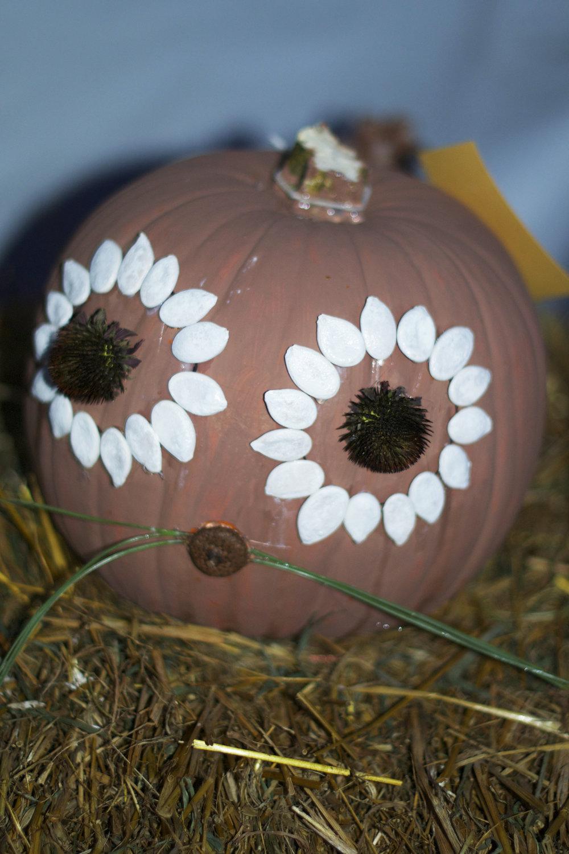 white-pumpkin-seed-eyes.jpg