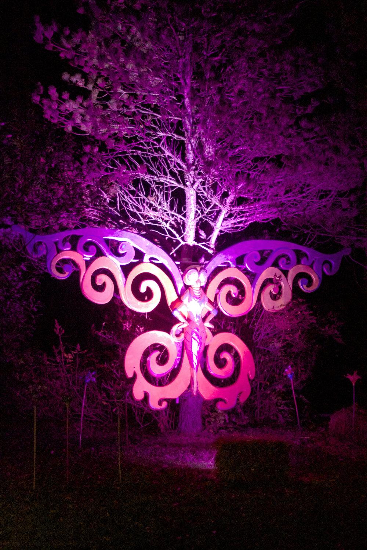 butterfly-glowing-in-the-dark.jpg