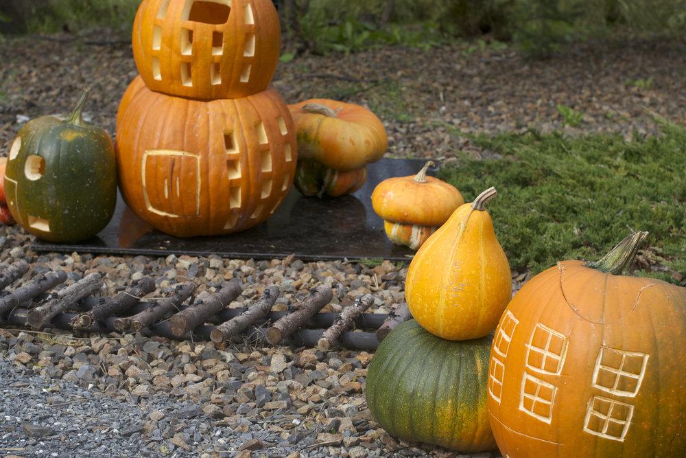 pumpkin-town-apts.jpg