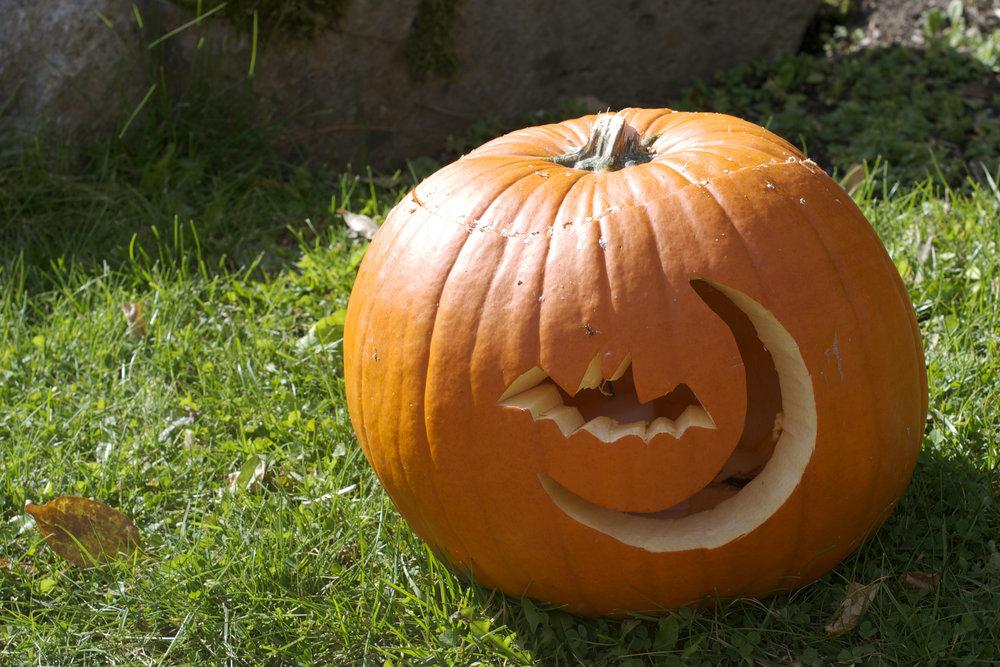 bat-and-moon-pumpkin.jpg