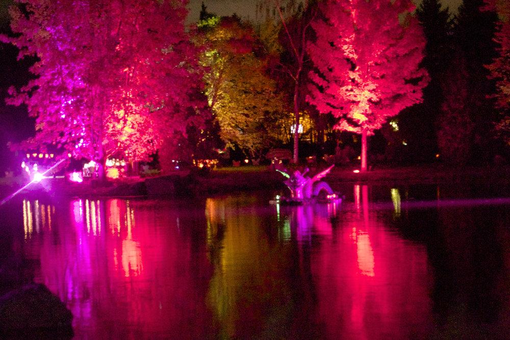lit-up-pond.jpg