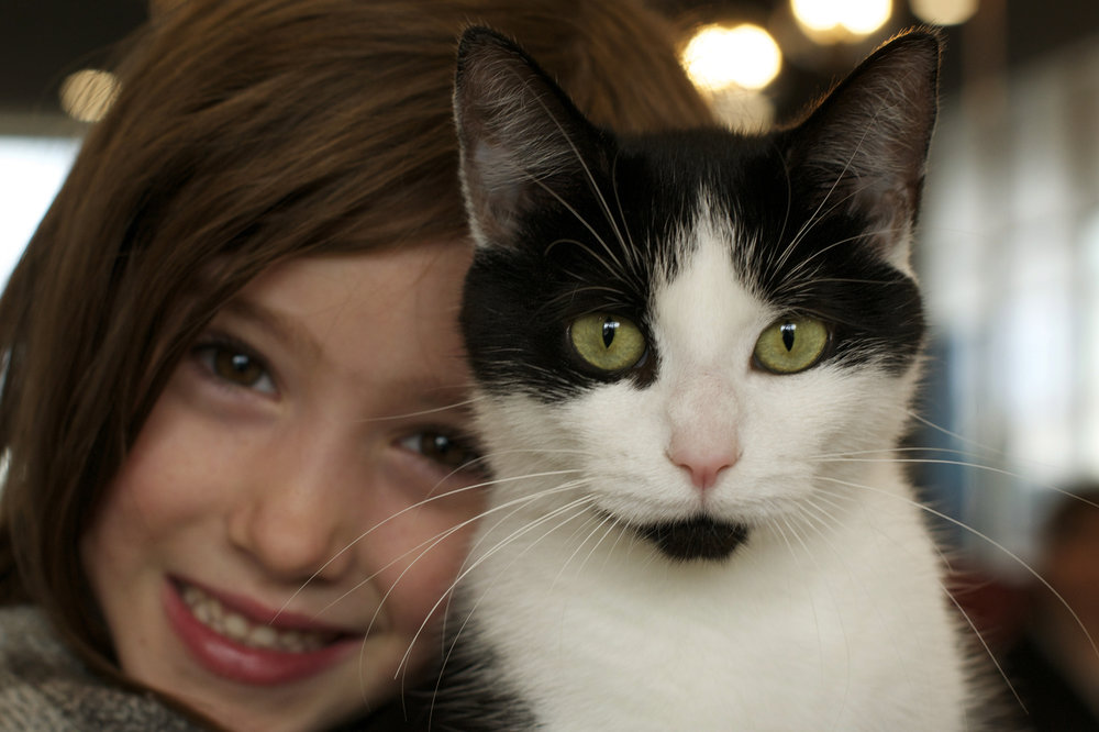 b-and-w-kitty-and-girl.jpg