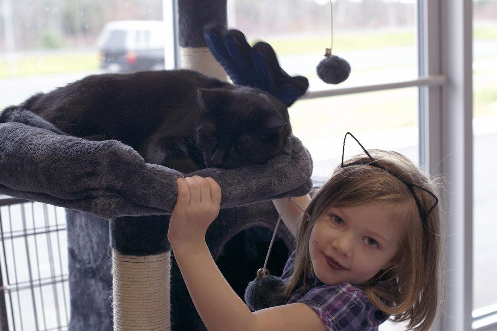 kitty-headband-girl-patting-kitty.jpg