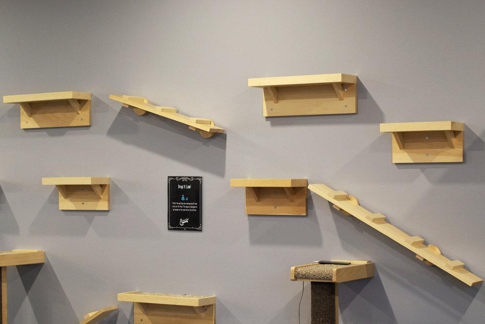 wall-of-climbers.jpg