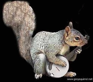 See y'all tomorrow night in Weston. #squirrel #money #banjo