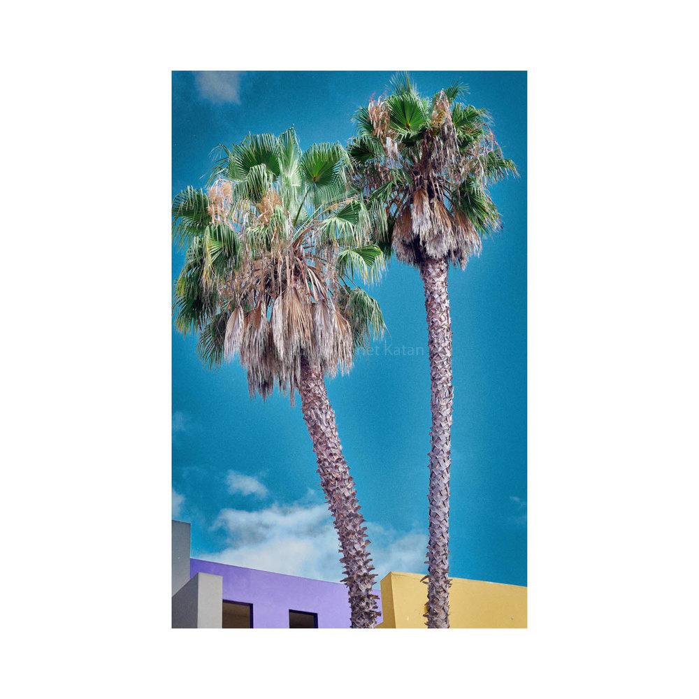 Santa Barbara-1-2.jpg