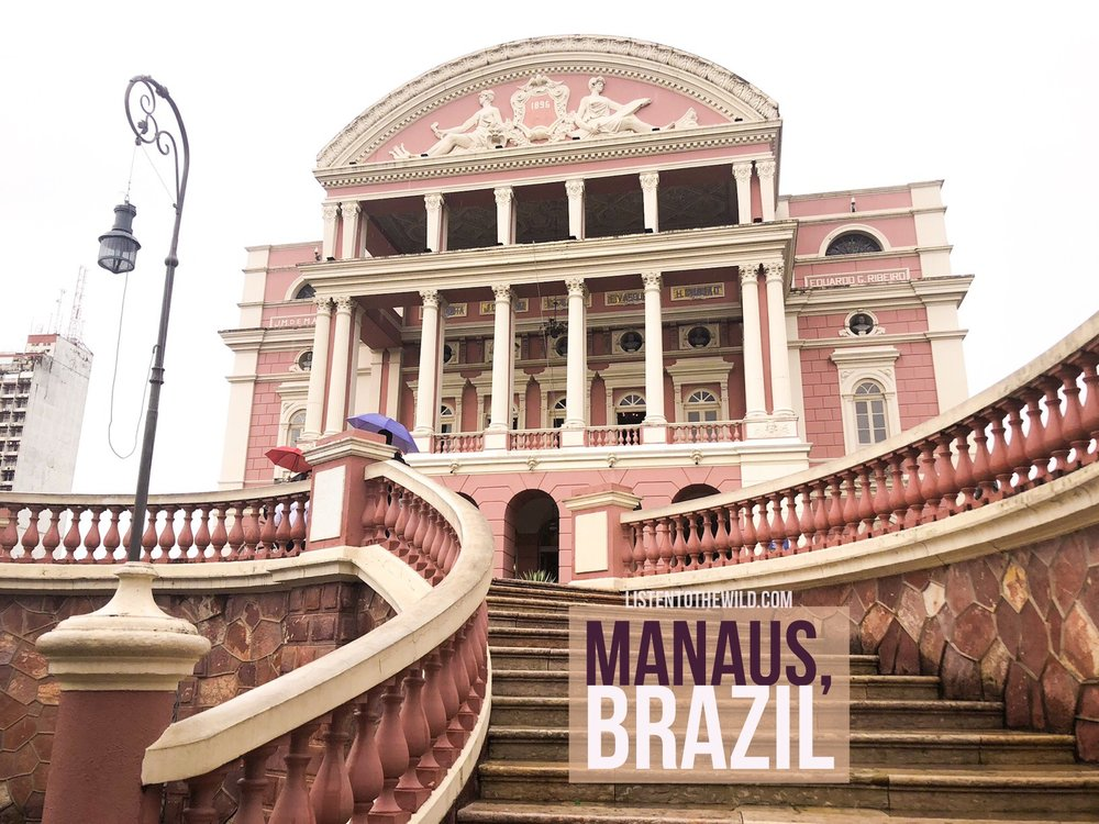 Travel blog city guide to Manaus, Brazil