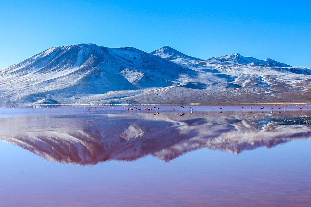 Laguna Colorada in the Altiplano, Bolivia, near Salar de Uyuni