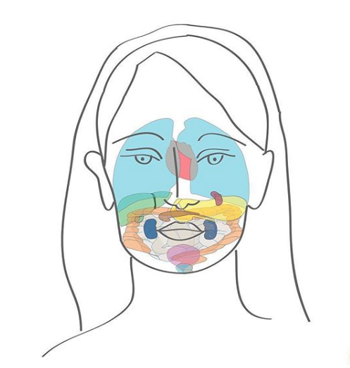 chinese face mapping and skin coaching with Nikolett Jones