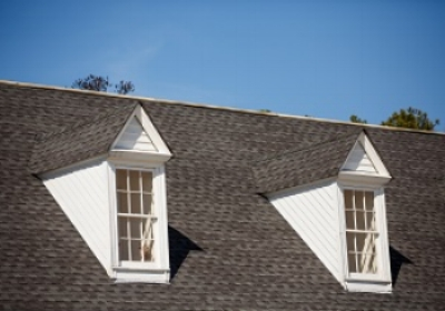 shingle roof 1.jpg