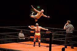 Wrestling.jpeg