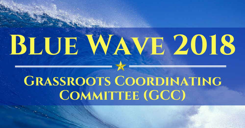 Blue Wave (NO WNDC LOGO), 18 Apr 18.png