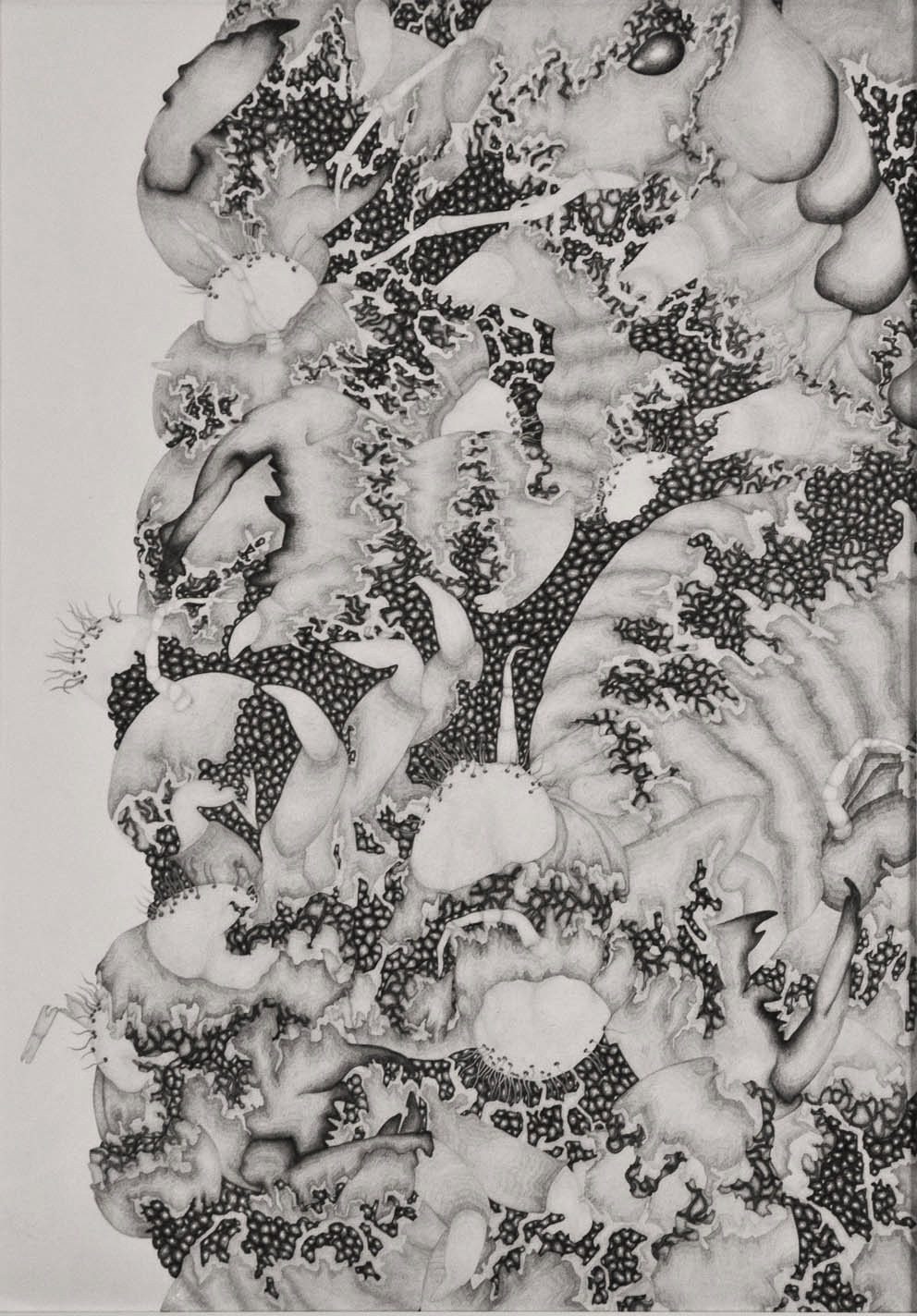 Entropy,  2013. 70cmx50cm. Pencil on Fabriano paper.