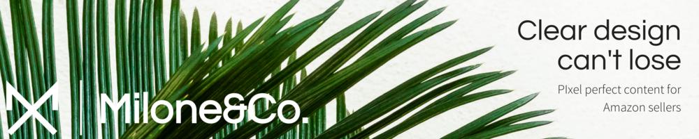 Hero banner | 3000:600 pixel aspect ratio