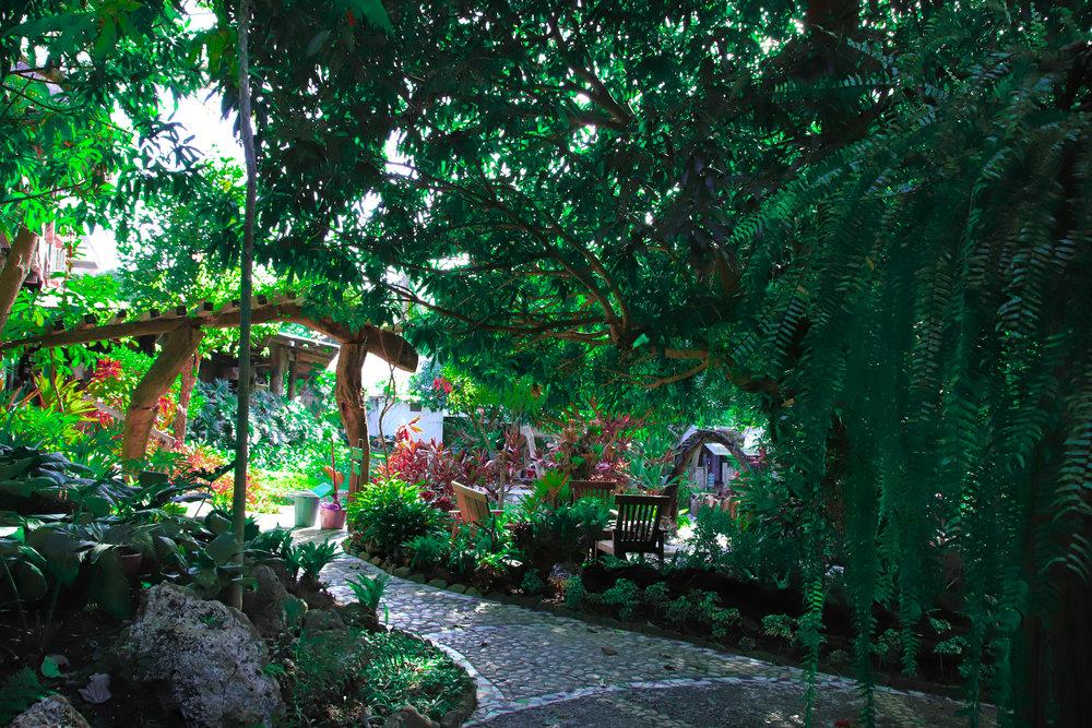 garden arc 2.jpg