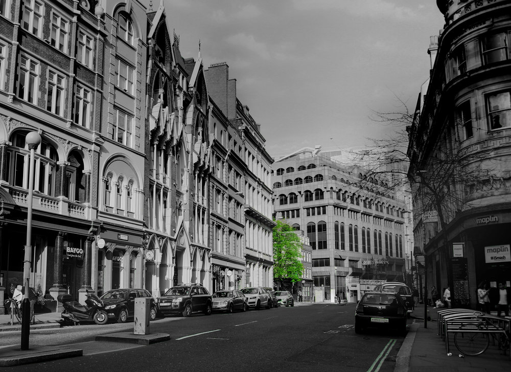 Tree in the City.jpg