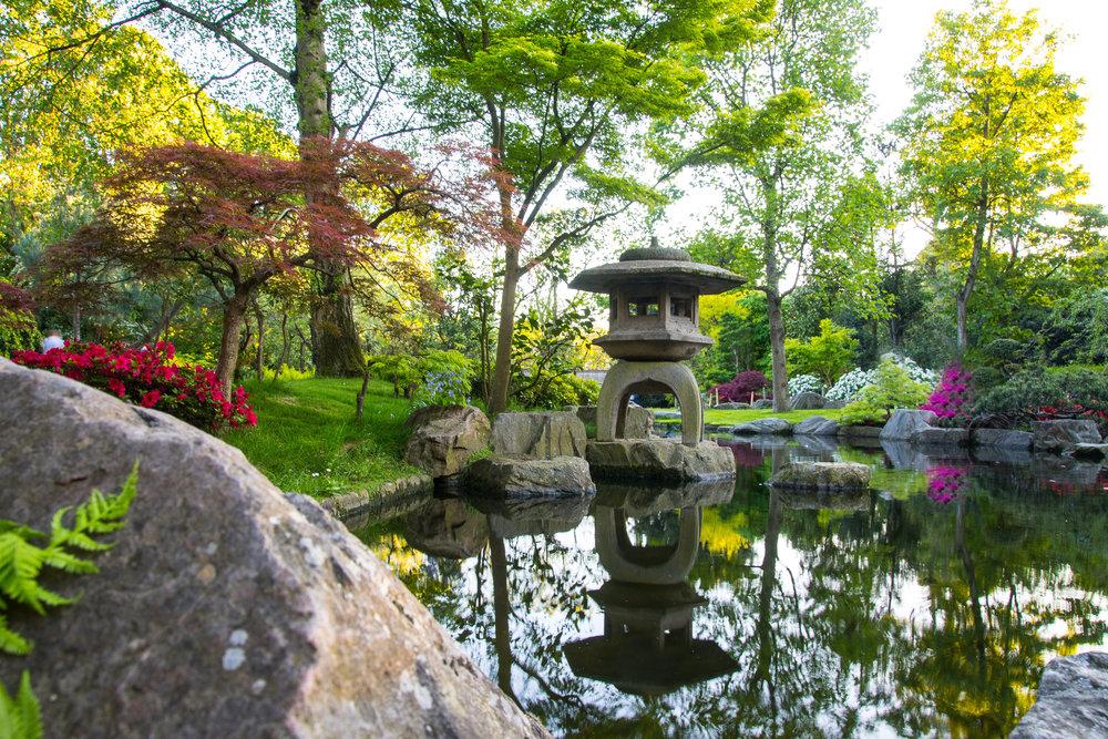 Kyoto area6 copy.jpg