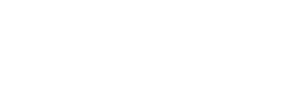 BG PV Logo_White 1000.png