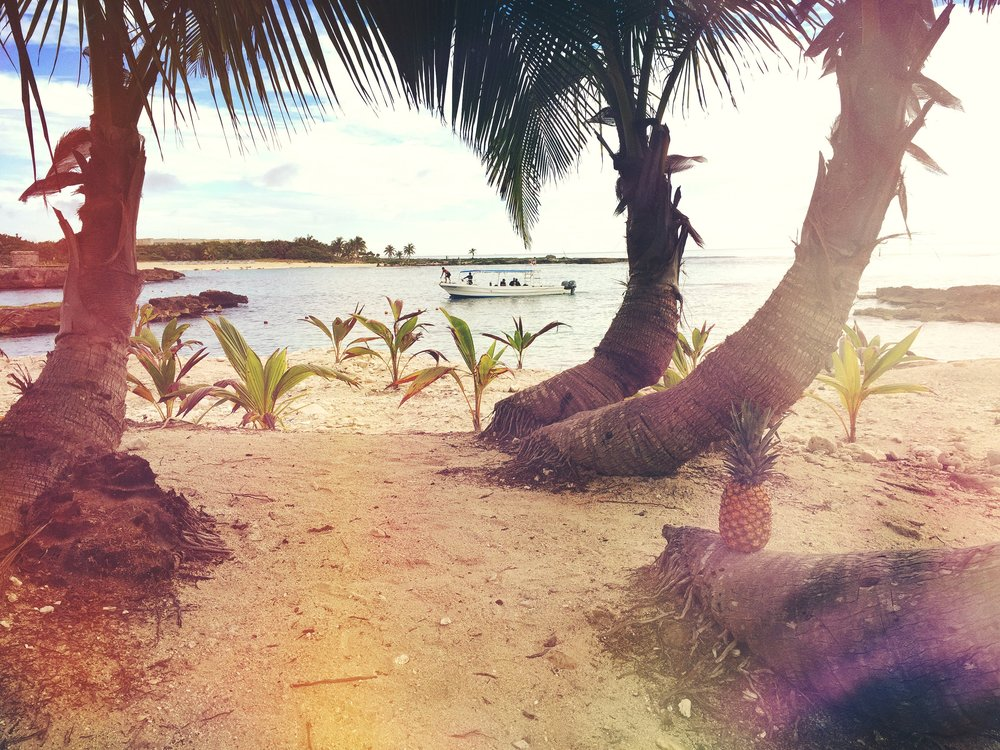beach-boat-coconut-trees-174641 (2).jpg
