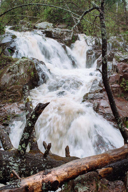 tischer-creek-5-21-2017-1606.jpg